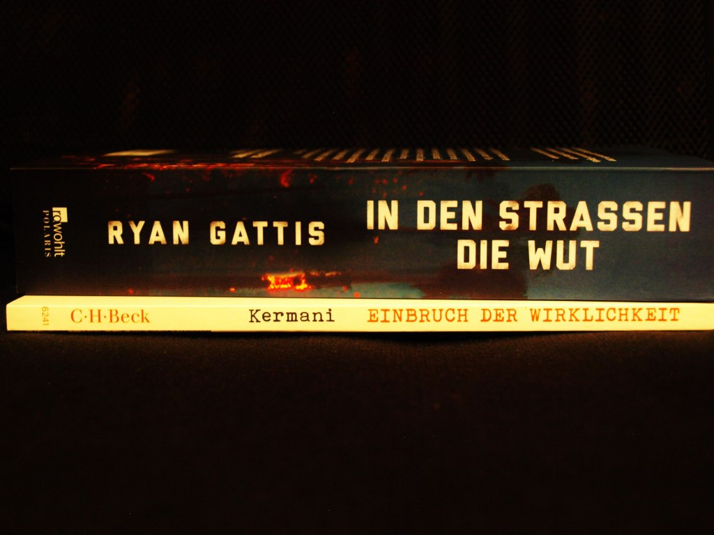 Bücherblog Bücherherbst Neuerwerbungen Bücher Kermani Gattis