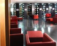 bibliothek-buecherherbst-buecherblog-rainer-sturm_pixelio-presseschau-rueckblende