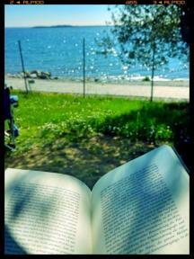 Lesen am Meer Buecherherbst Buecherblog Buecherliebe Gardasee